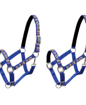 vidaXL hovedtøj til heste 2 stk. nylon fuldstørrelse blå